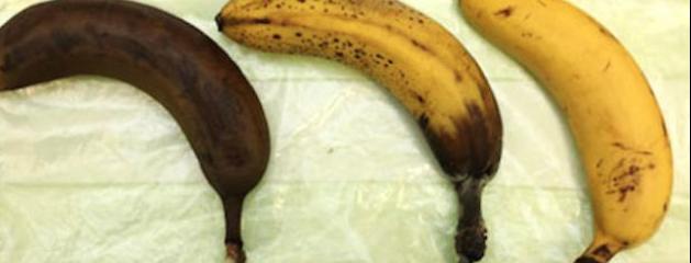 manger la peau de banane
