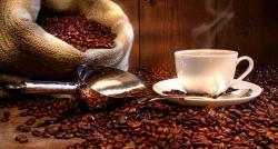 Thé versus Café : les apports nutritionnels expliqués par le Docteur Jean-Michel Cohen
