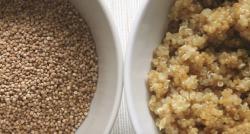 Le quinoa, cet aliment qui cartonne est produit dans la région d'Anjou ! Comment expliquer un tel succès ? - VIDÉO
