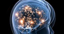Des chercheurs américains ont mis au point un algorithme qui, à partir d'IRM du cerveau, est capable de déterminer si une personne a des idées suicidaires