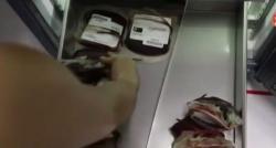 Technologie: Regardez comment sont livrées ces poches de sang en quelques minutes dans les hôpitaux du Rwanda ! - VIDÉO